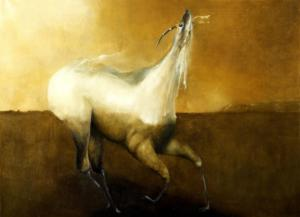 """""Antilope""cm 50x70"