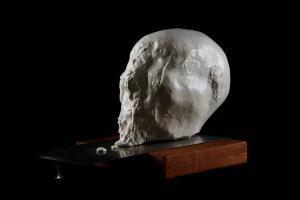 """A head"" - sculturacm 40x30x30"